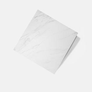 Cuccaro White Gloss